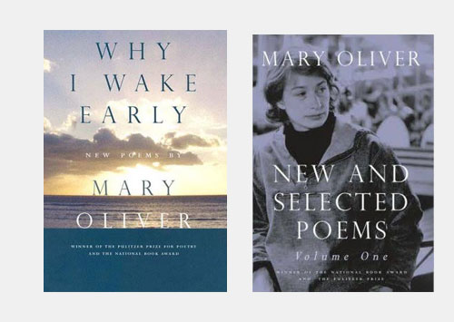 Why I Wake Early / New and Selected Poems